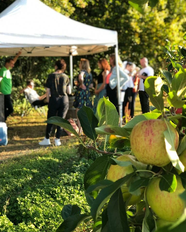 Natural English Cider & Food Tour Petnat Kent Sussex