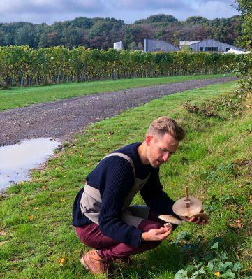 Natural English Wine & Food Tour Sparkling Kent Sussex