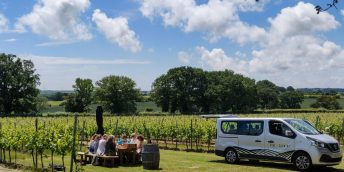 Kent and Sussex wine tours, wine tasting and vineyard tours,