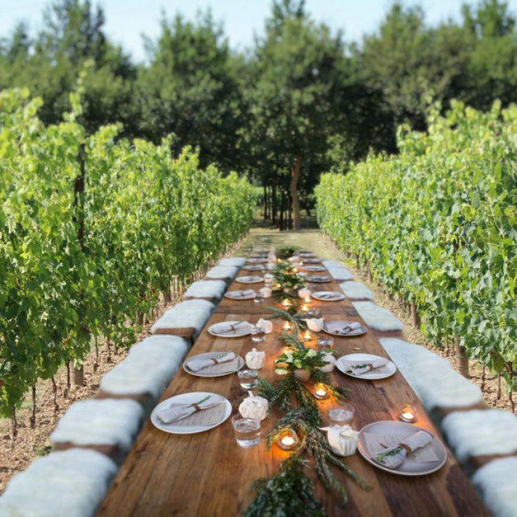 wine and food tasting experiences